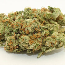 marijuana medical card